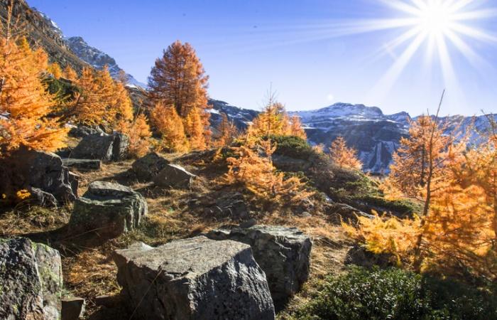 Une image d'un des derniers stages photo en automne dans le parc national des Ecrins