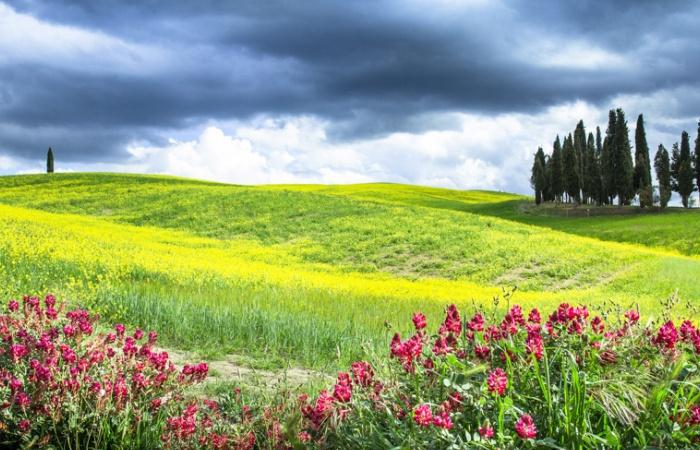 séjour photo de paysage en Toscane au printemps
