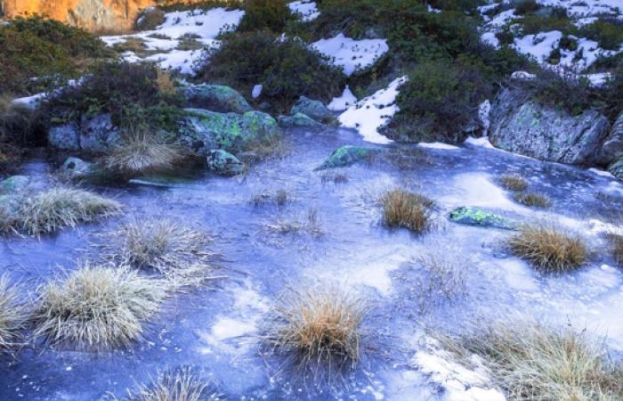 Stage photo nature en montagne avec Léo Gayola, hautes-alpes